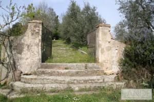 Tomba-Etrusca-della-Montagnola-02